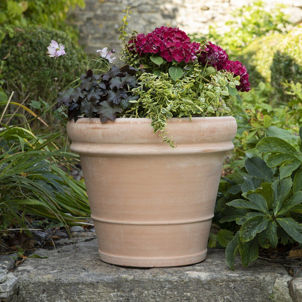 Bordo English Garden Extra Large Terracotta Pot - Gardenesque