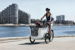 Mk1-e Butchers and Bicycles- Best Cargo Bike