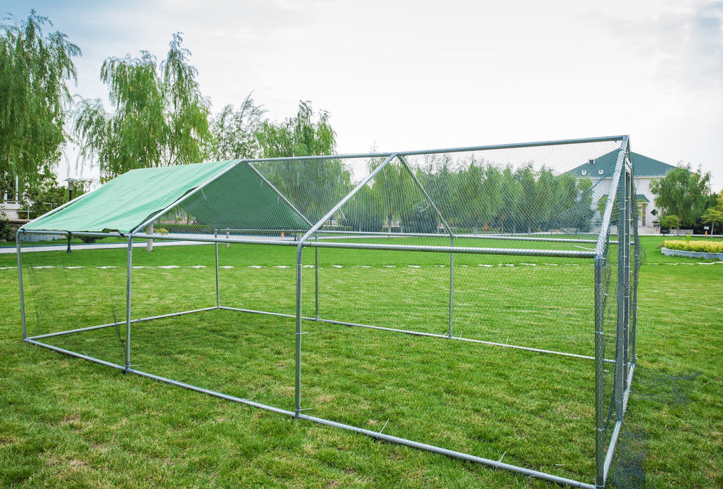 Metal Chicken Duck Run 6m x 3m 38mm frame - IN STOCK