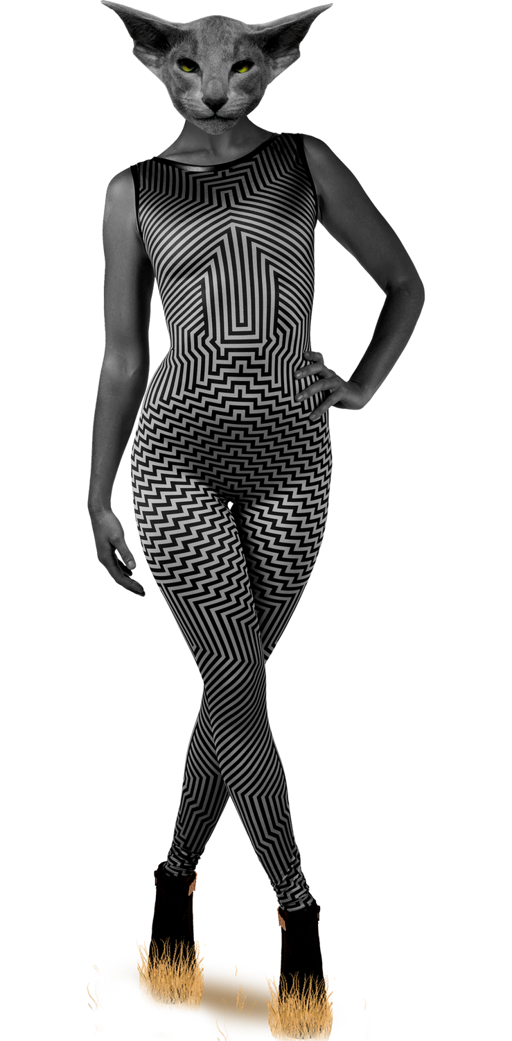 Scintillate Catsuit