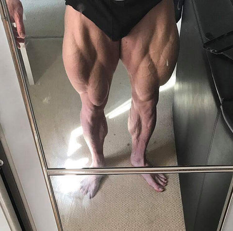 Quadzilla Leg Plan