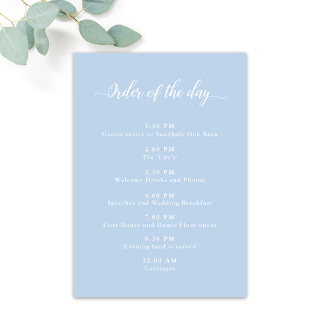 Sky Powder Blue and Gold Modern Wedding Order of the day