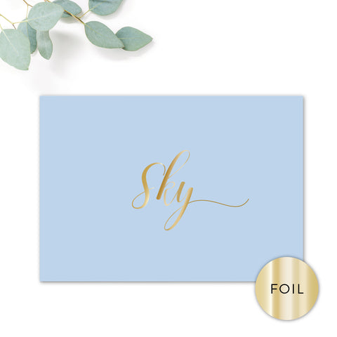 Sky Powder Blue and Gold Foil Modern Wedding Table Names