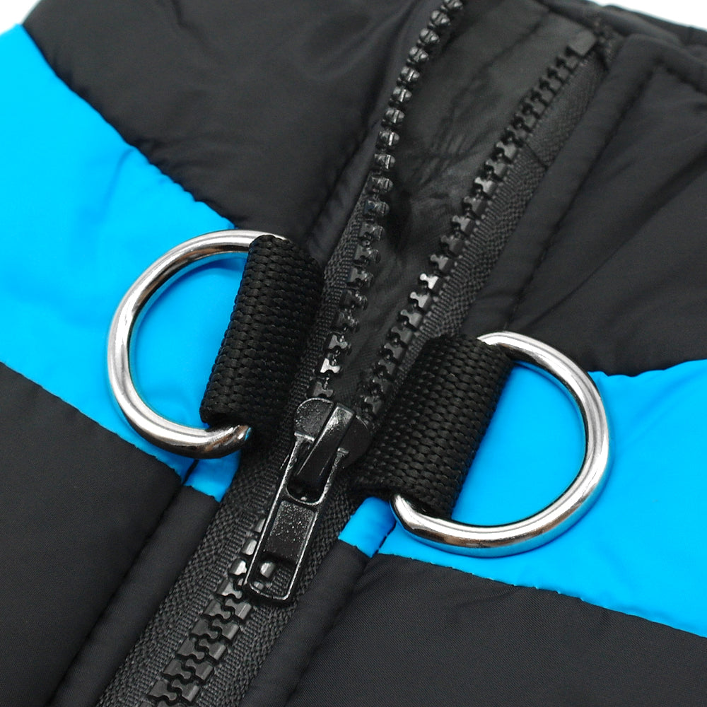 Stylish Ski Vest To Keep Your Dog Warm This Winter