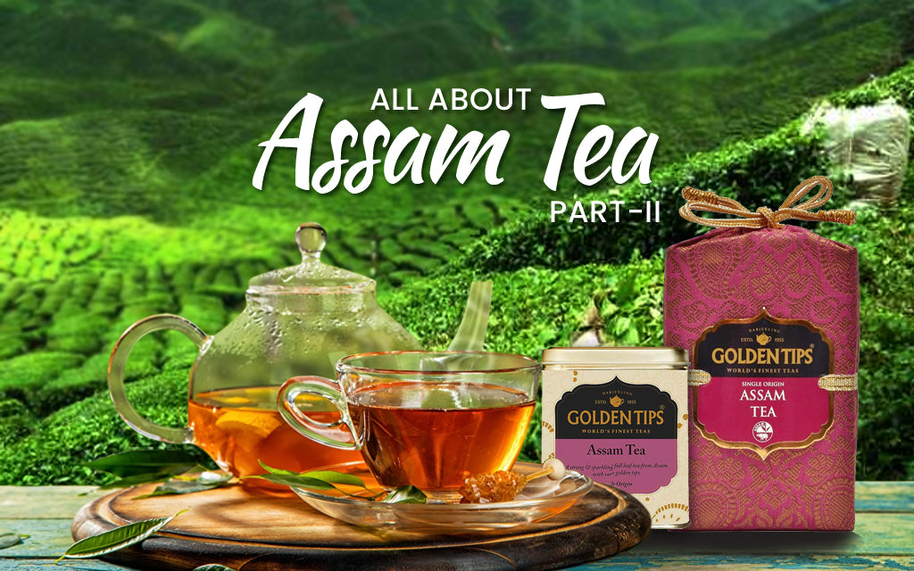 Assam Tea - History, Taste Profile, FAQ, and More (Part 2)