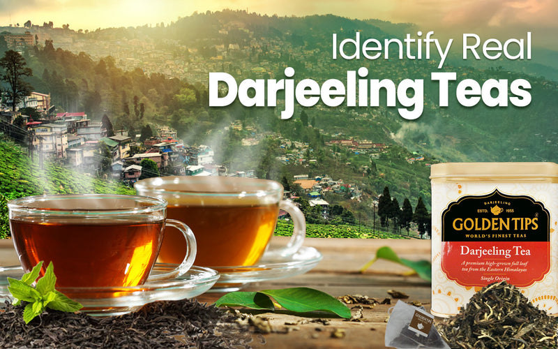 How to Buy Authentic High-Quality Darjeeling Tea
