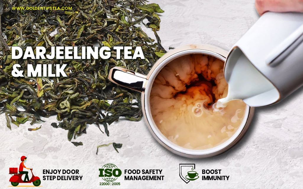 Best Darjeeling Teas With Milk