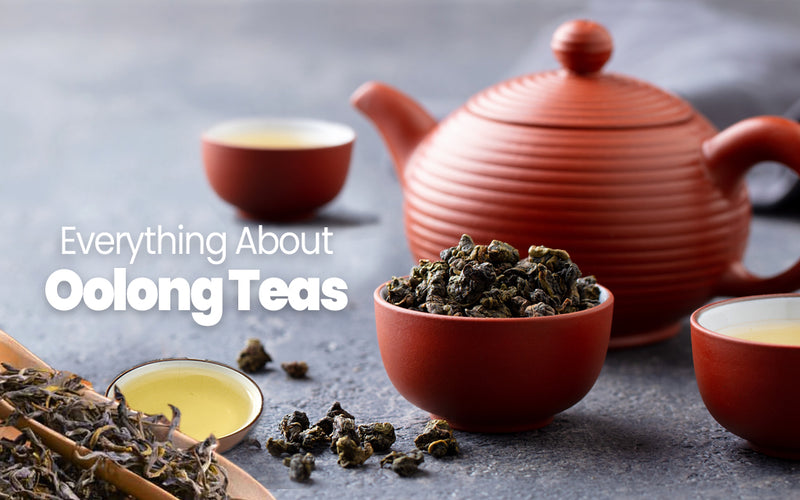 Everything About Oolong Teas