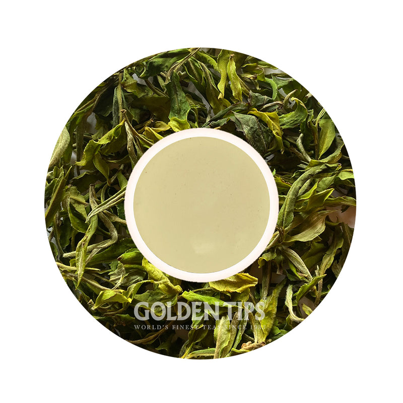 Pearl - Organic Darjeeling White Tea First Flush - 2021