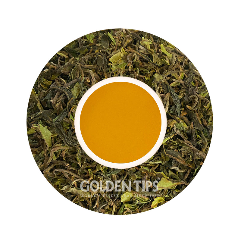 Spring Wisdom Darjeeling Black Tea First Flush-2021