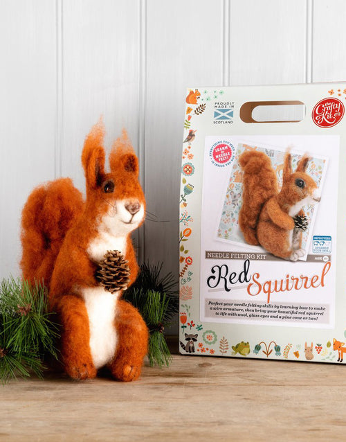 Highland Red Squirrel Needle Felting Kit, Crafty Kit Company