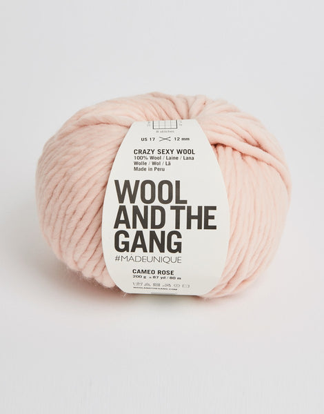 Crazy Sexy Wool Yarn, Wool and the Gang, Cameo Rose
