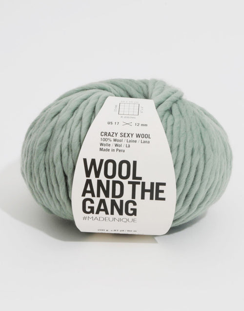 Crazy Sexy Wool Yarn, Wool and the Gang, Eucalyptus green