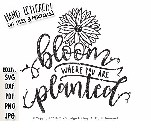 Bloom Where You Are Planted SVG & Printable