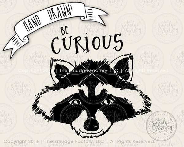 Be Curious Raccoon SVG & Printable
