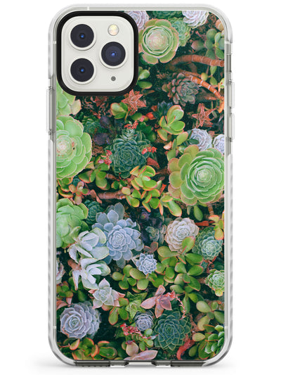 Colourful Succulents Photograph Impact Phone Case for iPhone 11 Pro Max