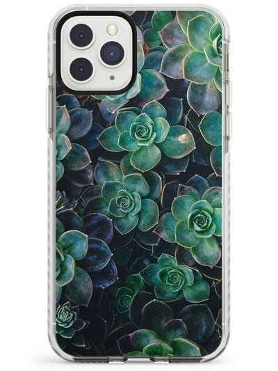 Succulents - Real Botanical Photographs Impact Phone Case for iPhone 11 Pro Max