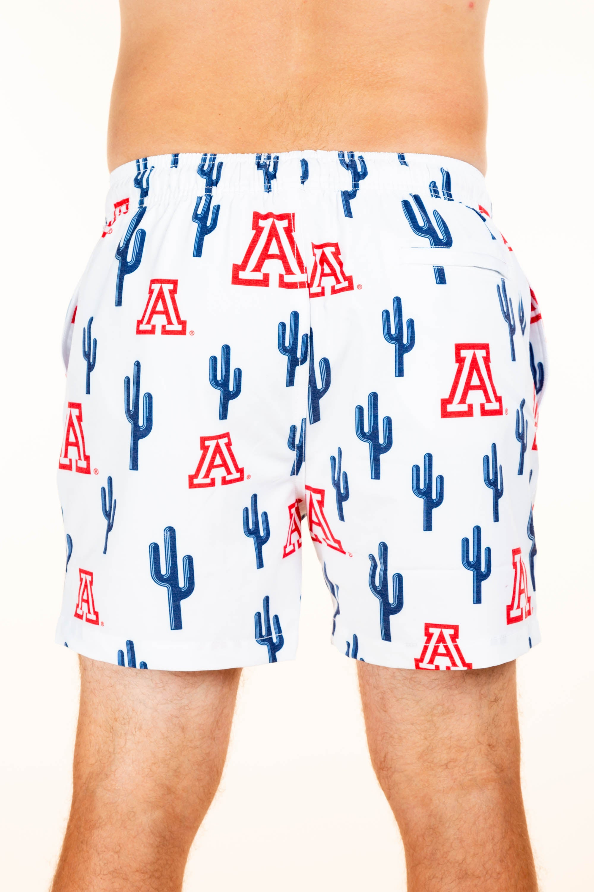 University of Arizona Cactus men's swimsuit