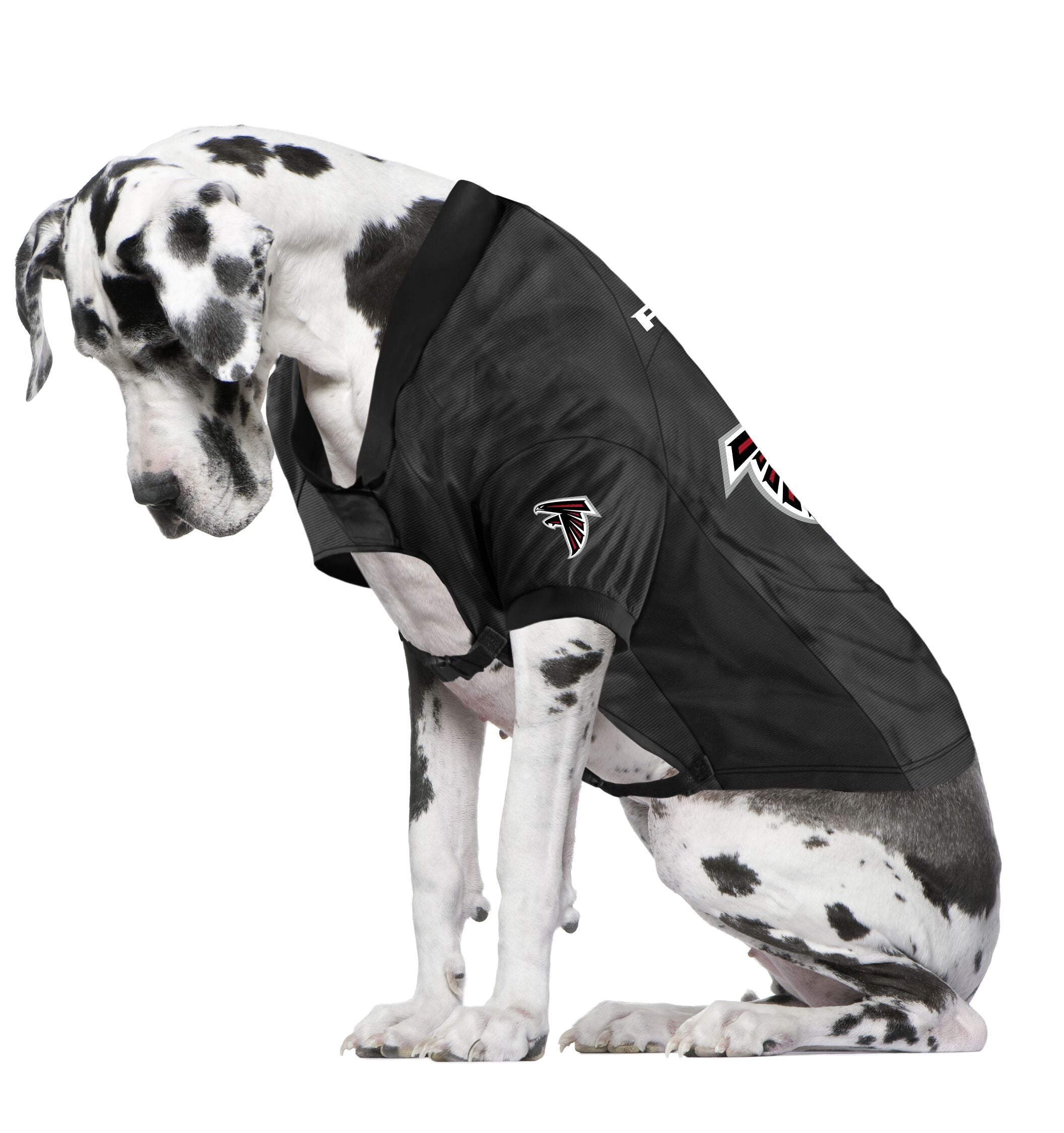Falcons Fan Jersey For Your Dog