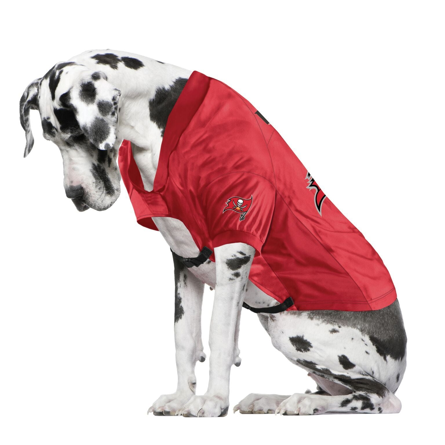 Buccaneers Fan Jersey For Your Dog
