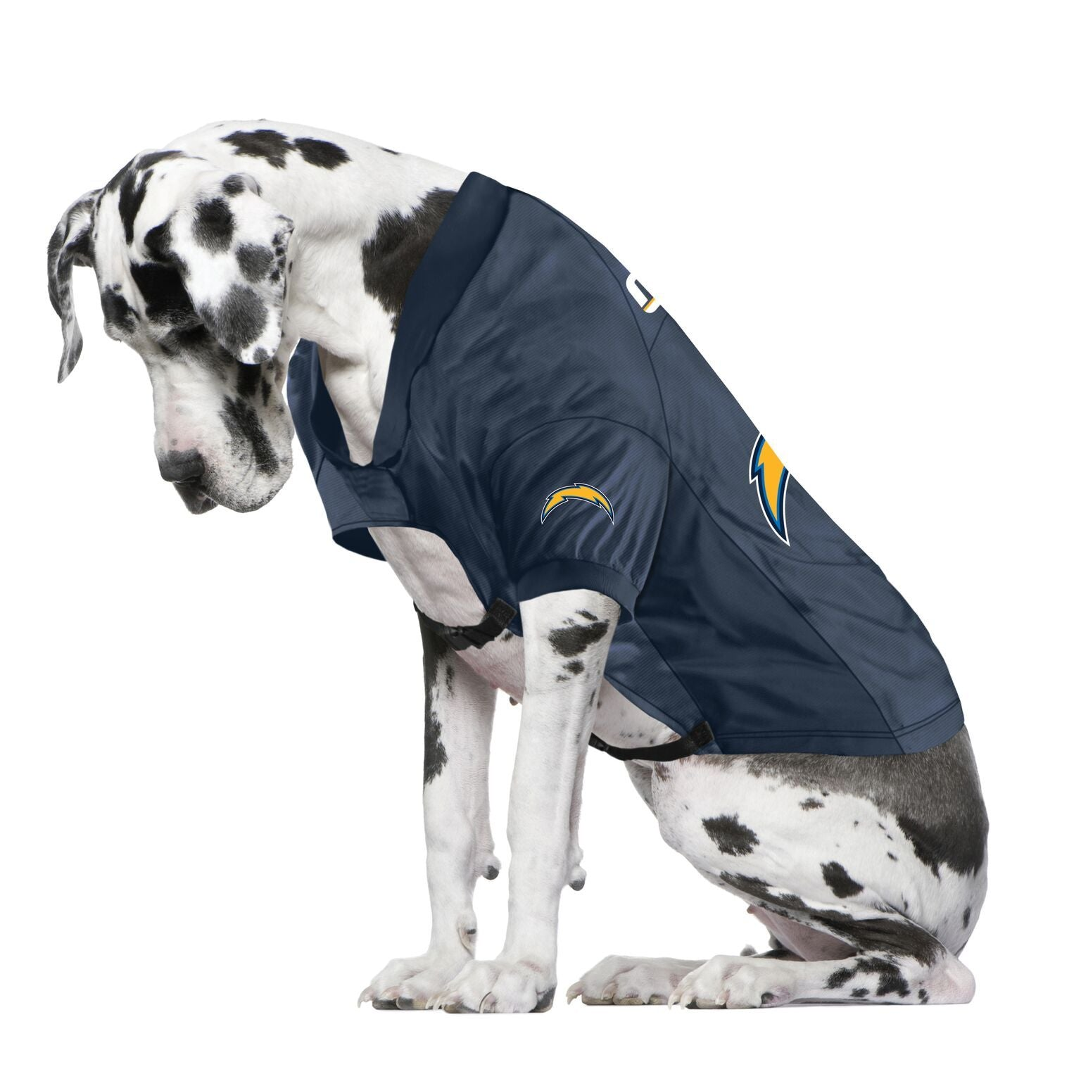 Chargers Fan Jersey For Your Dog
