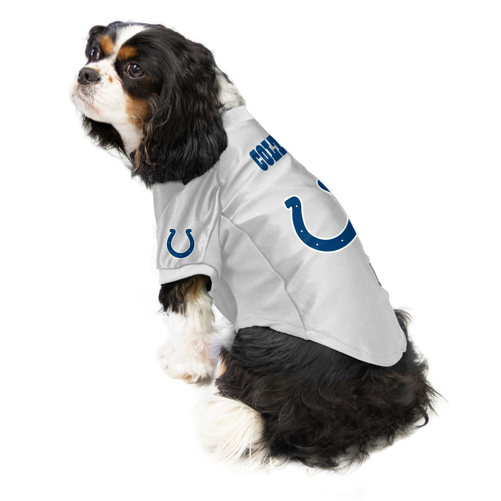 Colts outfit for dogs