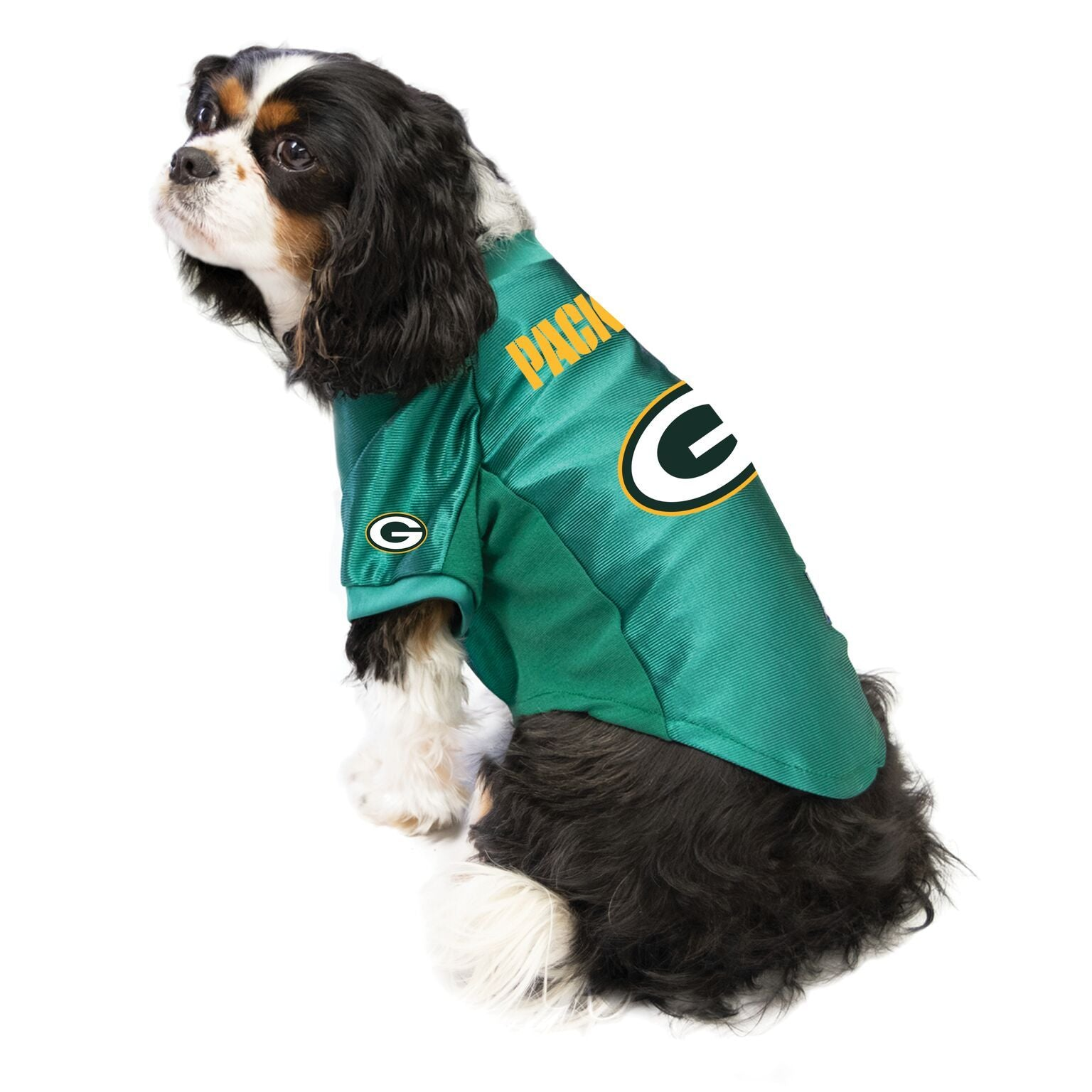 packers outfit for dogs