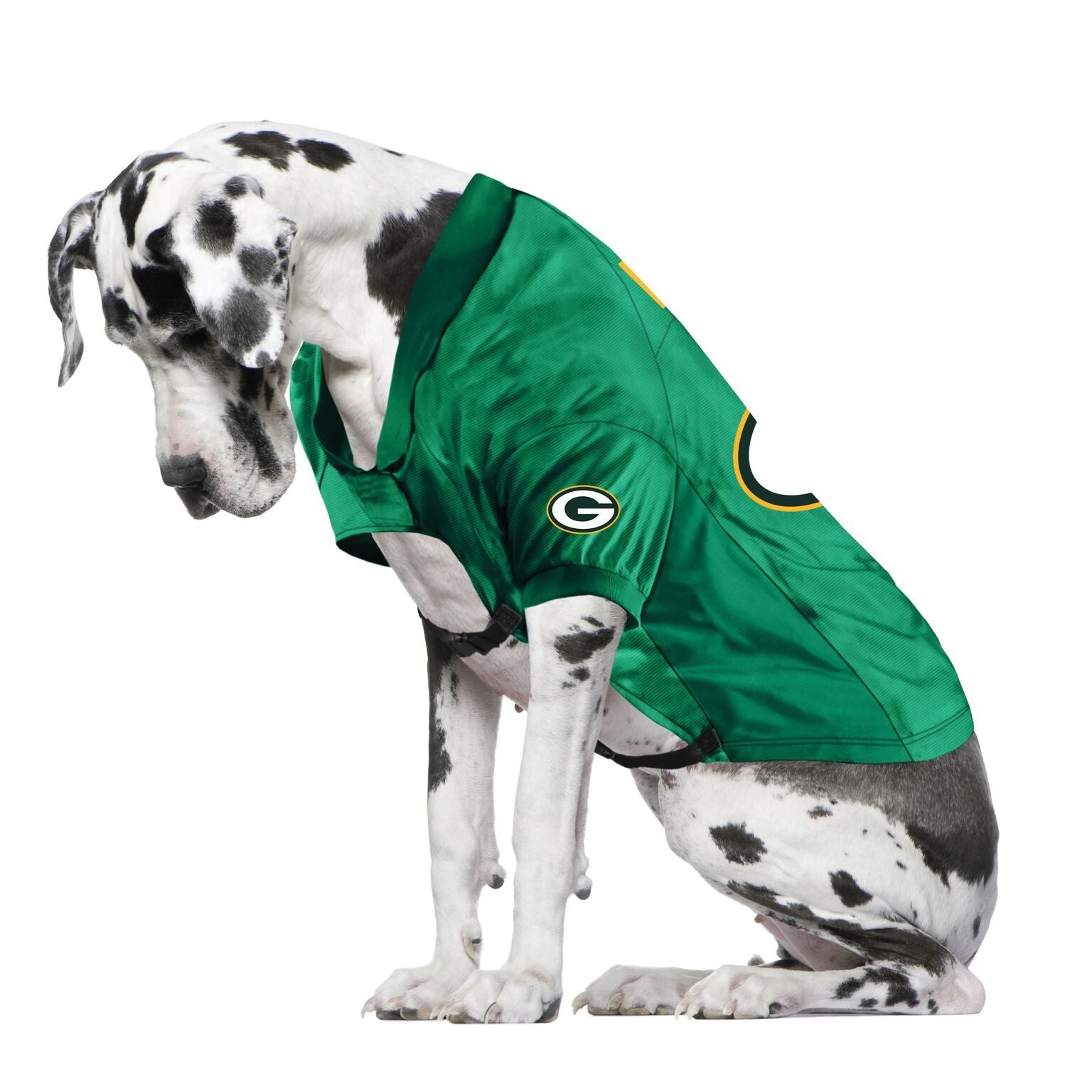 Packers fan jersey for your dog