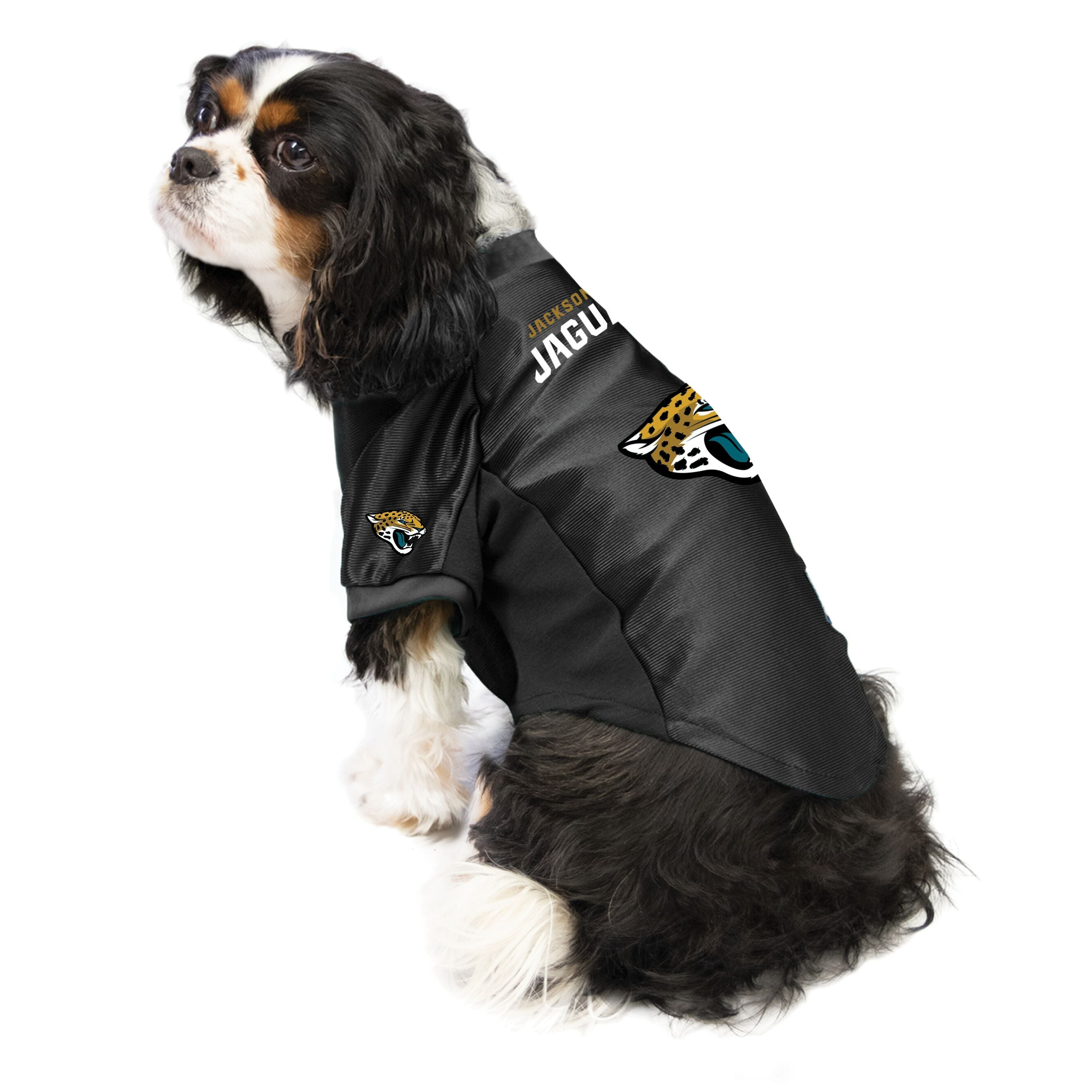 Jaguars outfit for dogs