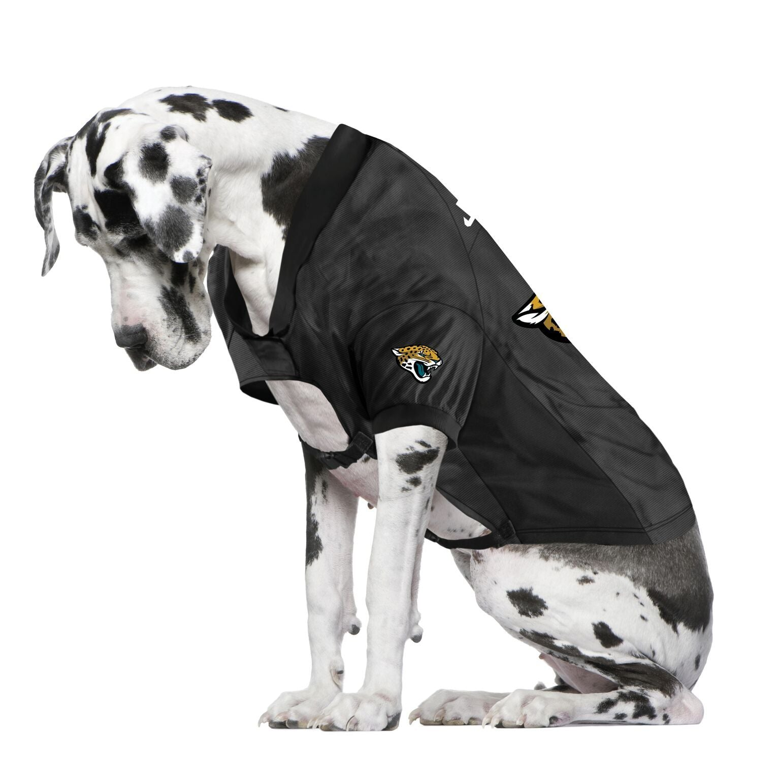 Jaguars Fan Jersey For Your Dog