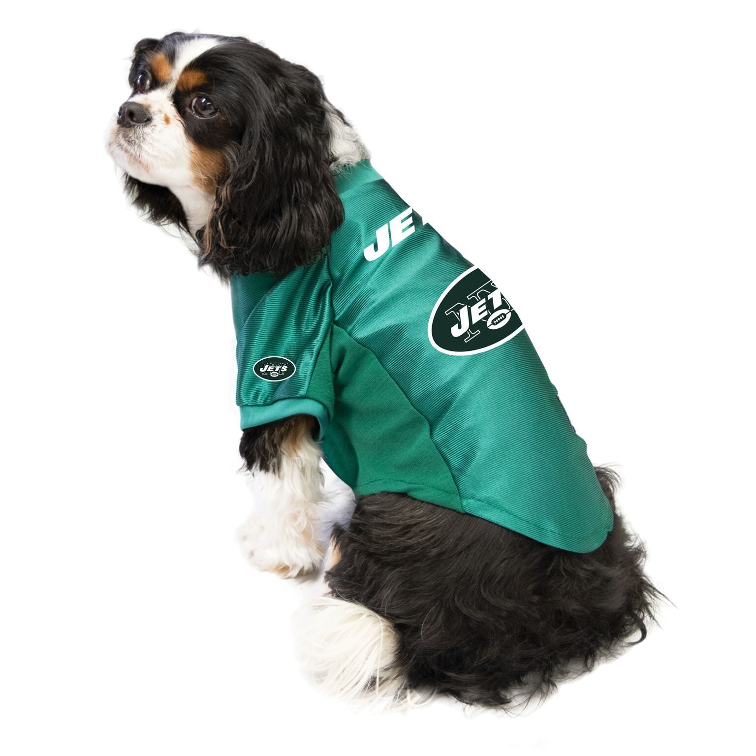 Jets outfit for dogs