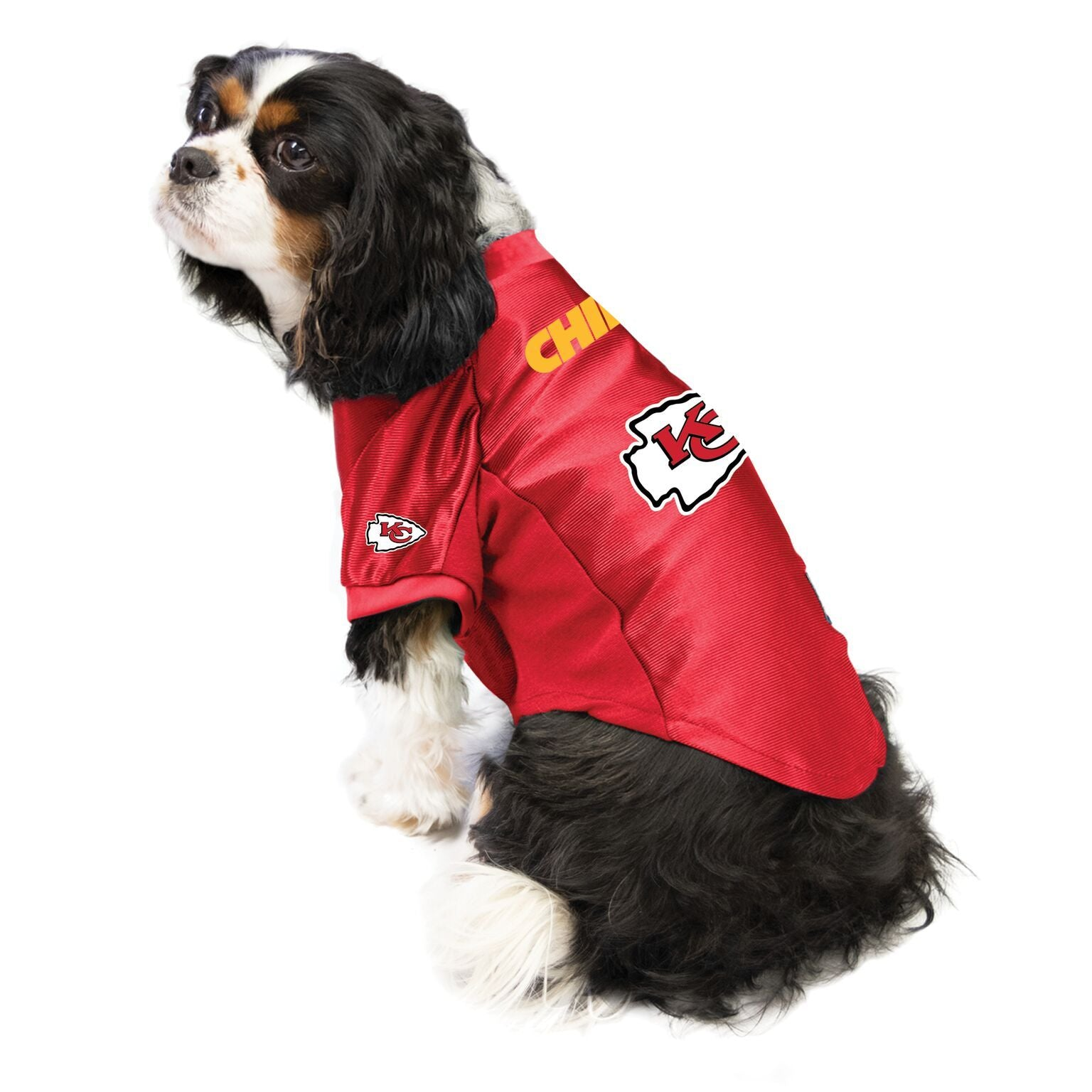 Chiefs outfit for dogs