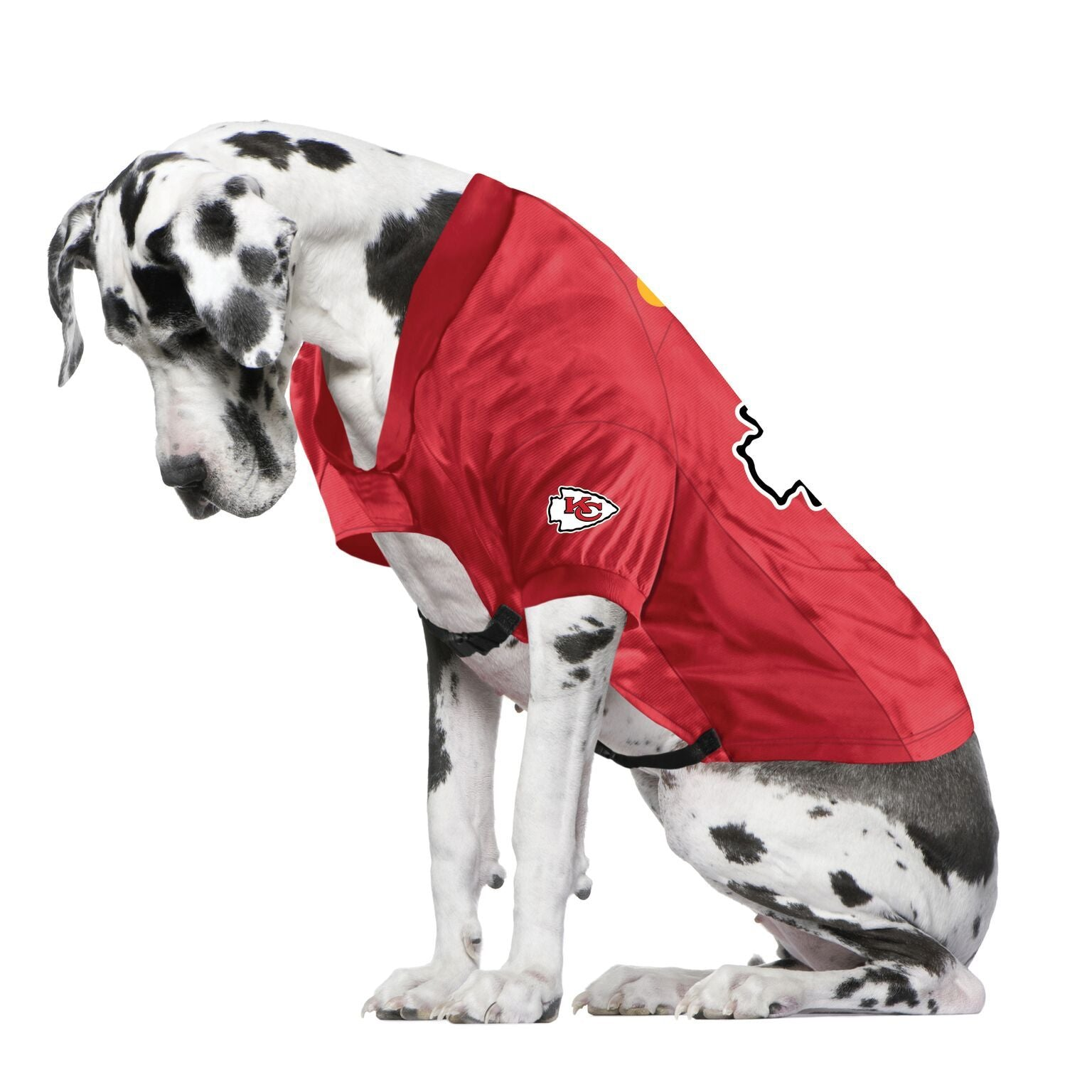 Chiefs Fan Jersey For Your Dog