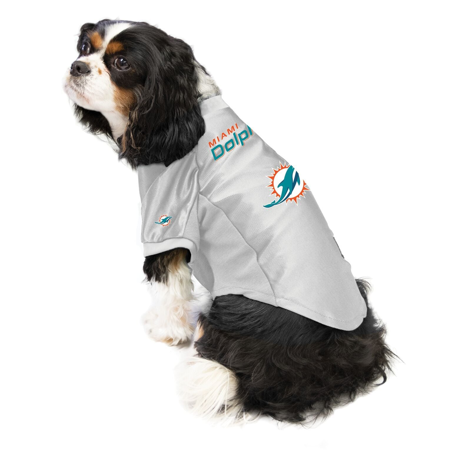 Dolphins Outfit for Dogs