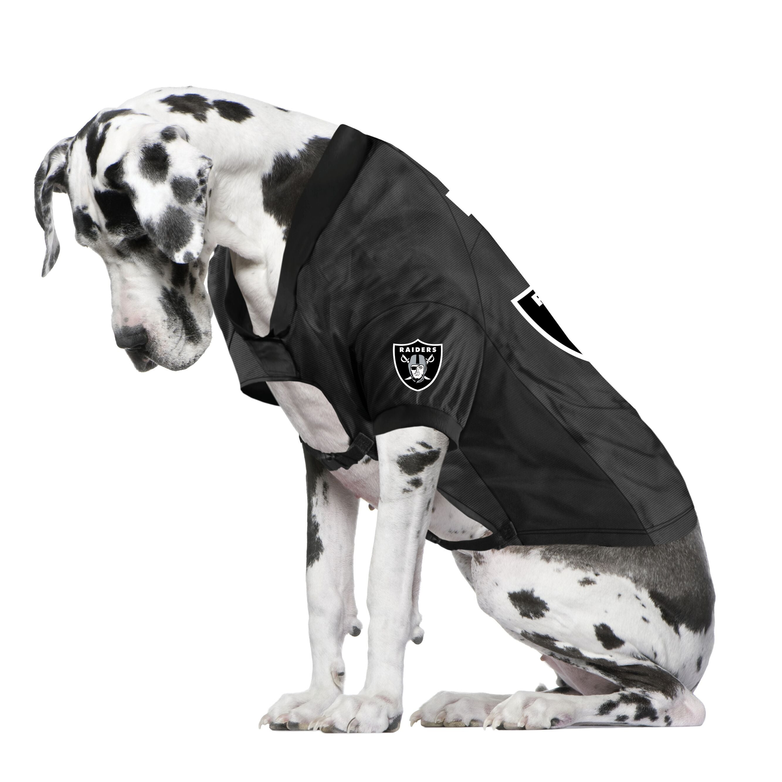 Raiders Fan Jersey For Your Dog