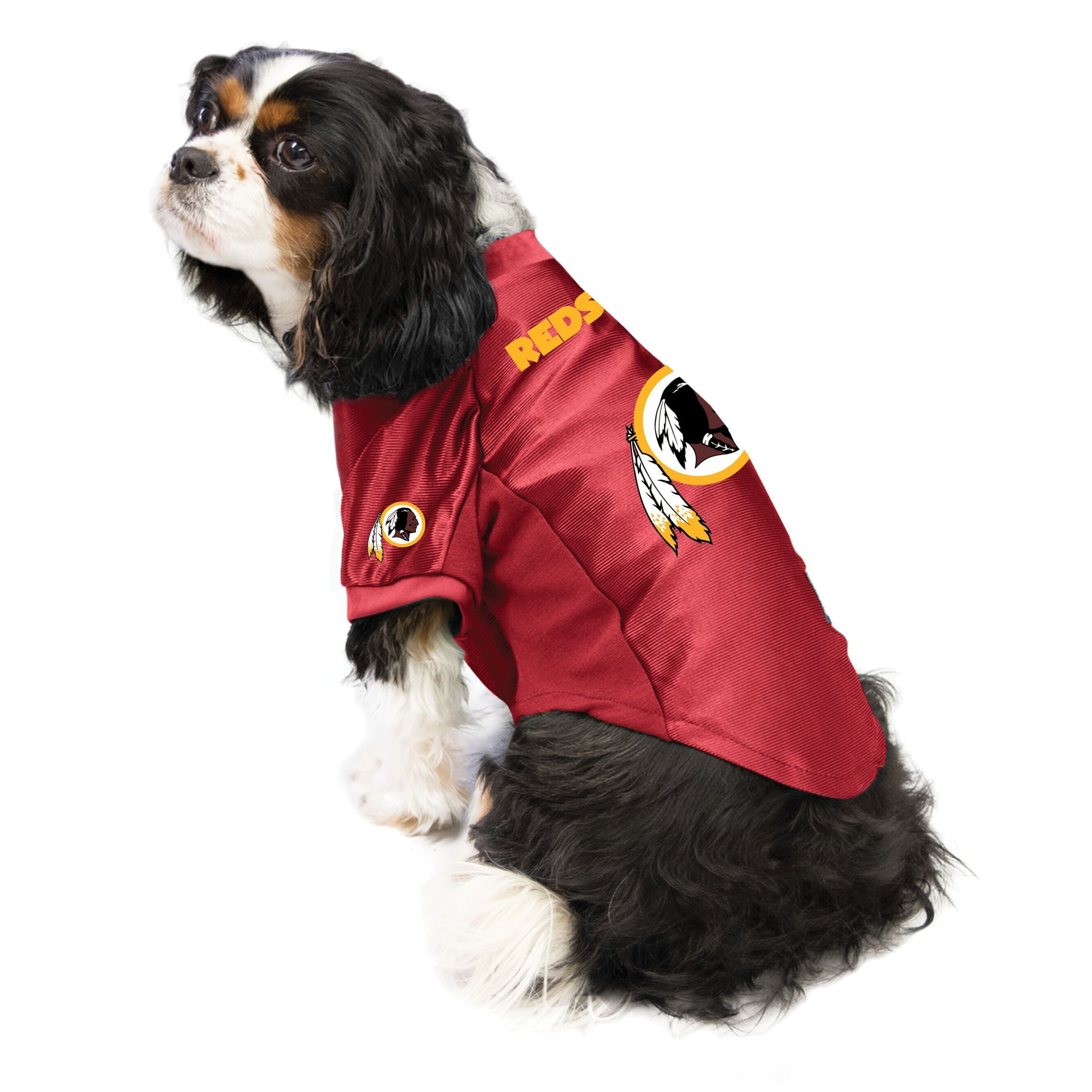 Redskins outfit for dogs