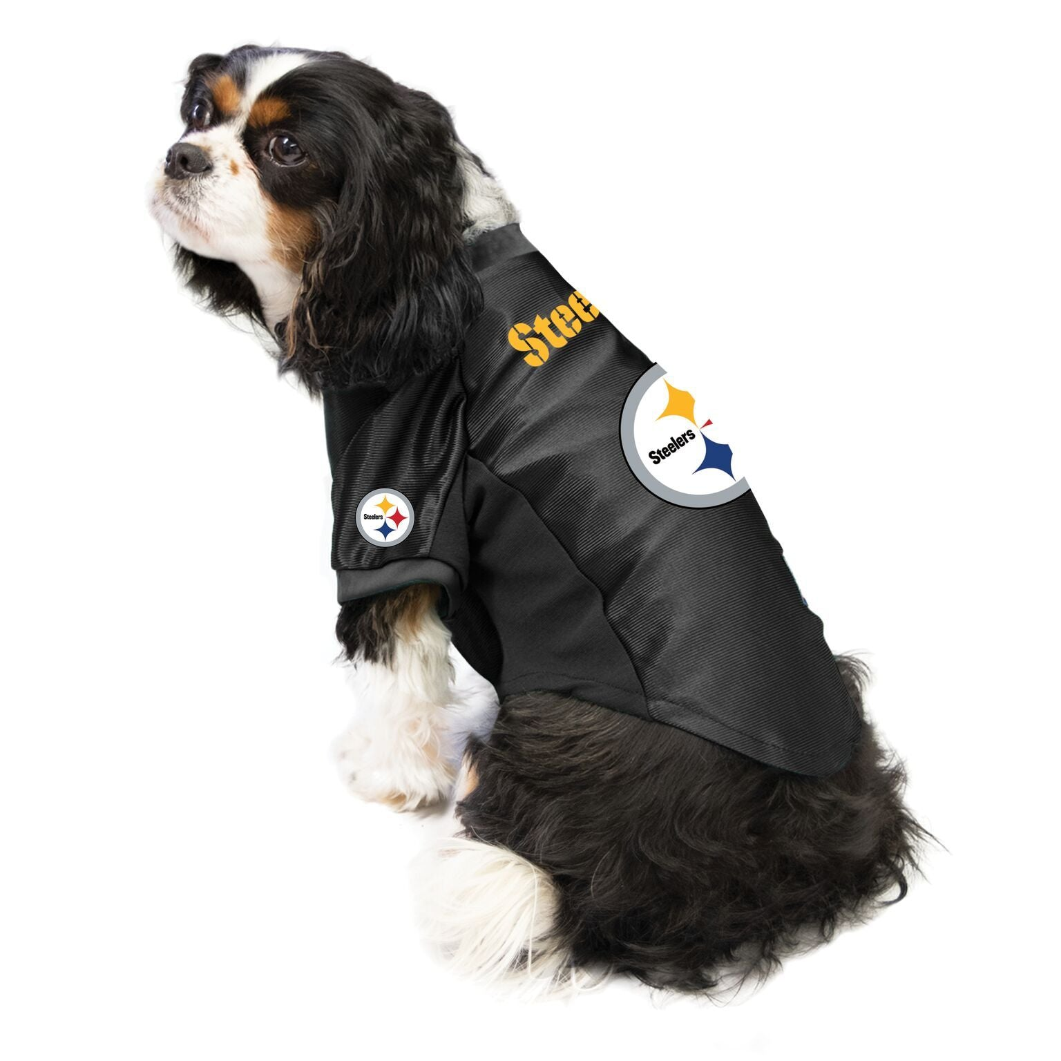 Steelers outfit for dogs