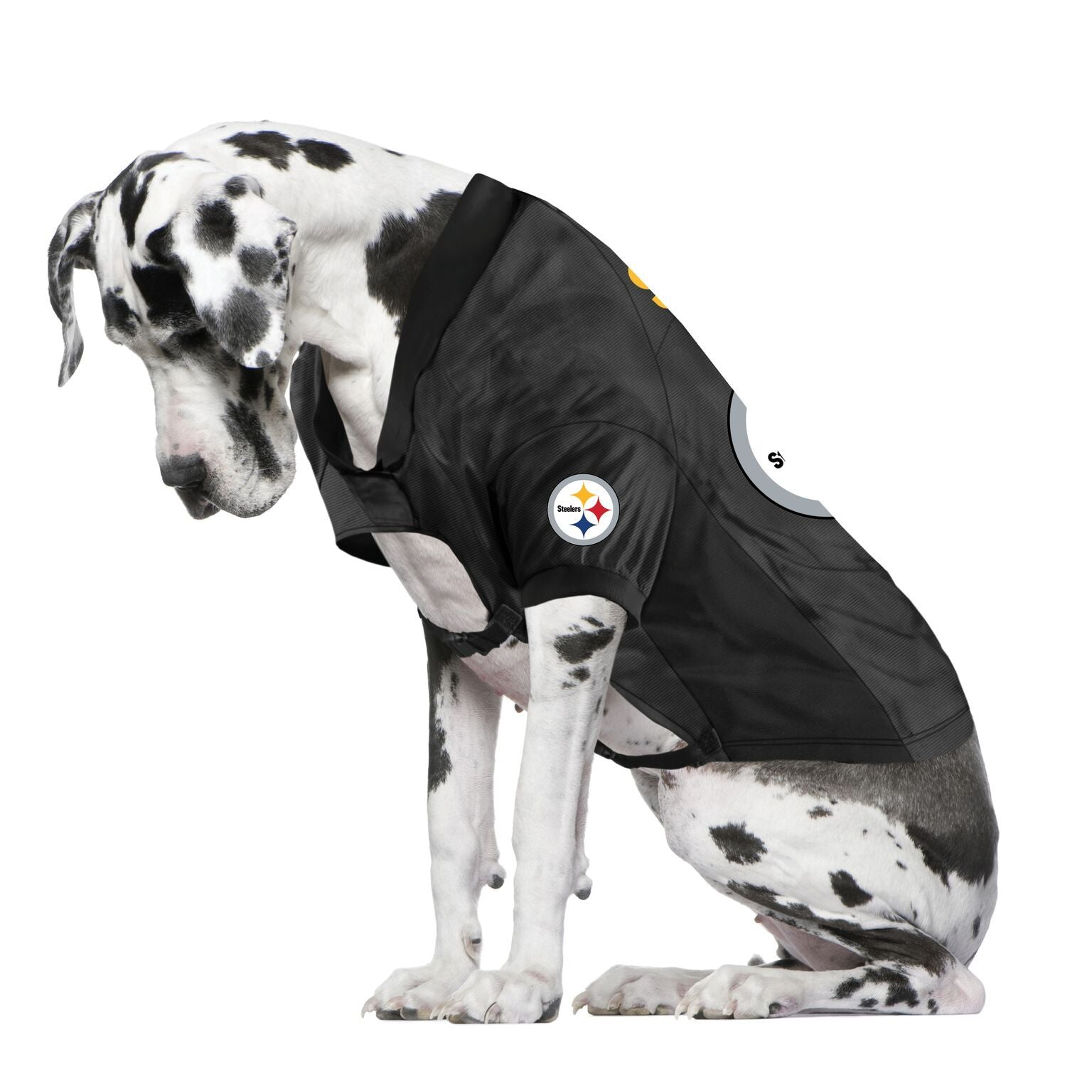 Steelers Fan Jersey For Your Dog