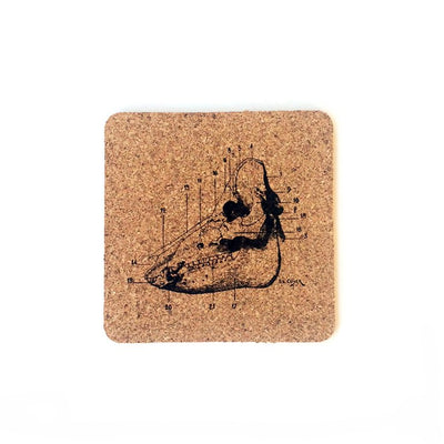 6pc. Cork Coasters: Animal Anatomy