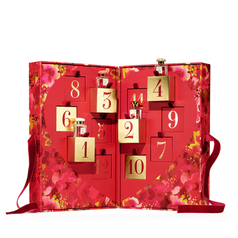 AERIN Advent Calendar Set