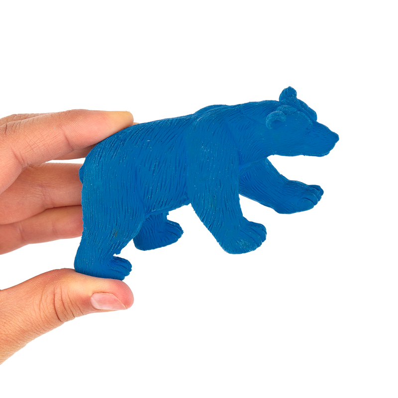 Bear zoo eraser in hand