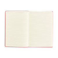 Open blue Flipside Notebook showing lined pages