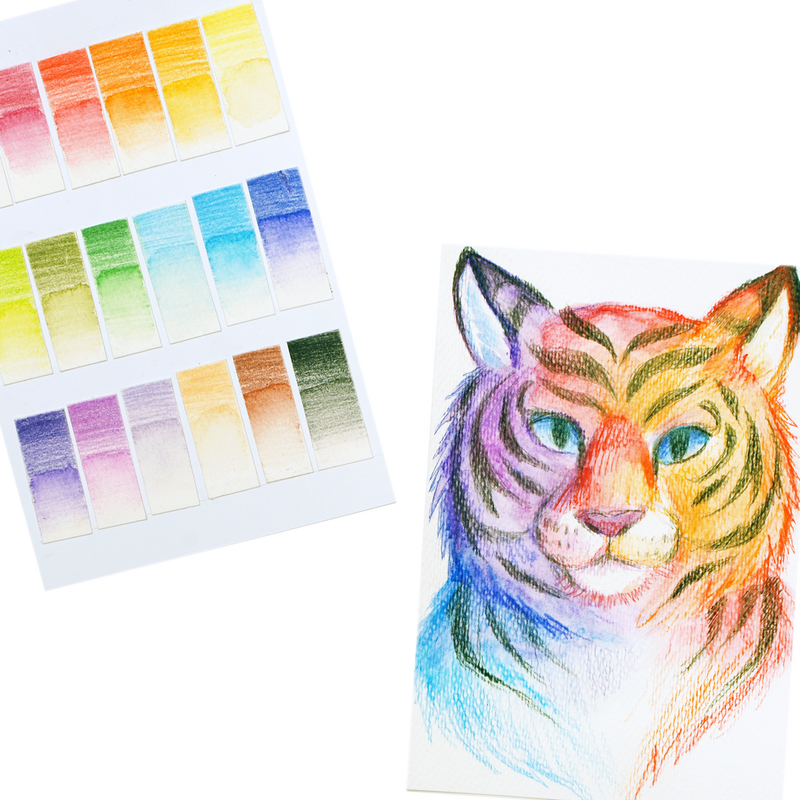 Tiger art and swatches created with Chroma Blends Mechanical Watercolor Pencils