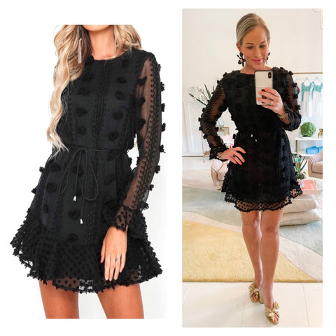 Black Long Sleeve Embroidered Appliqué Fit & Flare Dress with Semi Sheer Flute Sleeves