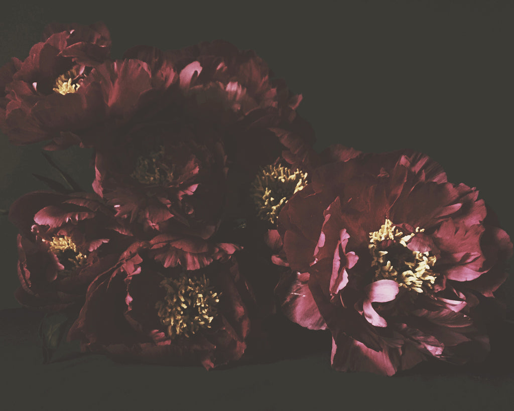Frida Prints Bouquet - Ashley Woodson Bailey