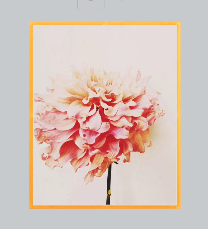 Never Forget Light Floral Print - Ashley Woodson Bailey