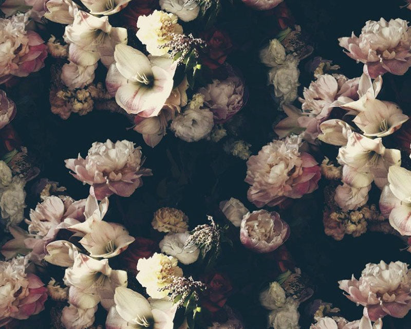 Dutch Love Dark Floral Wallpaper - Ashley Woodson Bailey