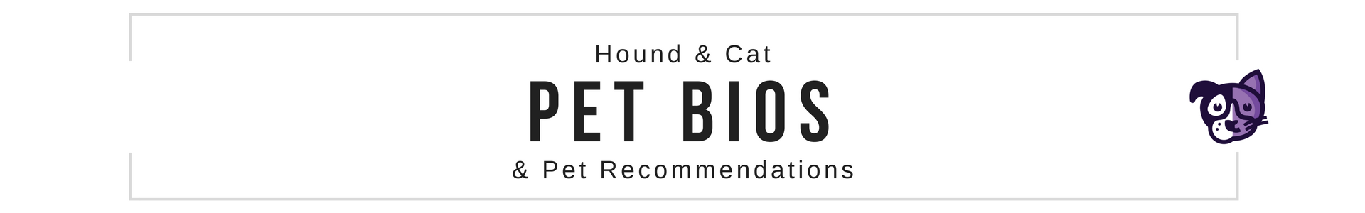 Hound & Cat Pet Supplies Product Recommedations