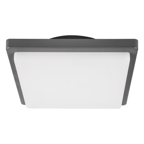 Spazio Nicra Bulkhead Ceiling Light