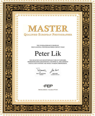 Federation of European Photographers, Master of Photography Award, presented to Peter Lik in 2018.